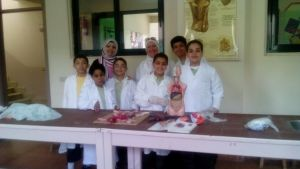 Upper Primary Science Activity